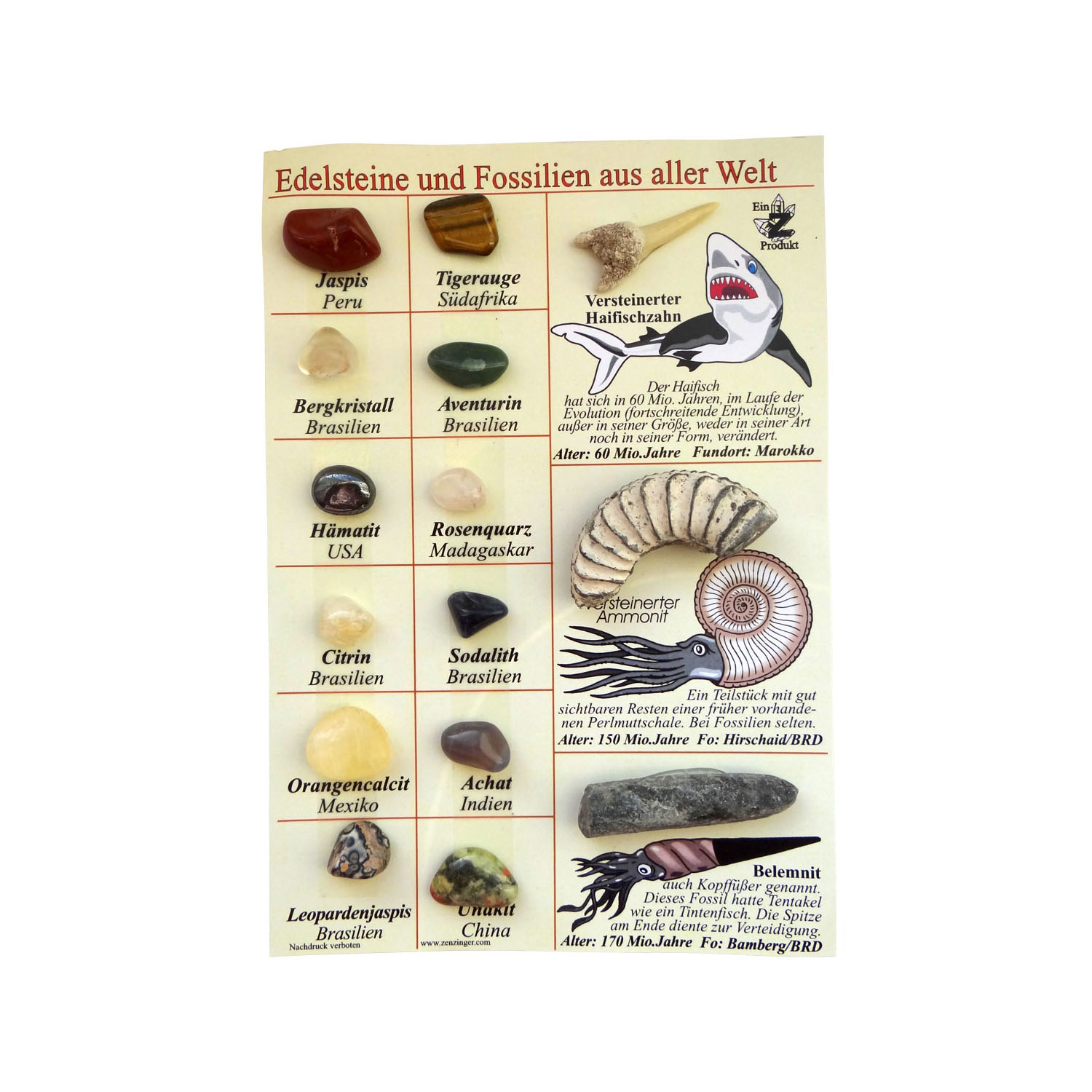Collection Board Gemstones and Fossils