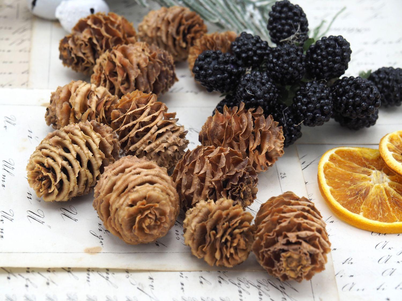 200g Zapfen Strictum Natur Deko Tischdeko Weihnachten Adventskranz Basteln