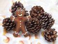 250g Zapfen Kiefer Tannenzapfen Weihnachten Basteln Kiefernzapfen Deko Tischdeko Adventskranz 6