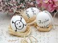 Eier Ostern Natur Hühnereier Deko Dekoration Tischdeko Frühling 9