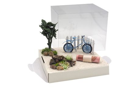 Geldgeschenk Verpackung Fahrrad Urlaub Blau