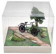 Geldgeschenk Verpackung Geldverpackung Fahrrad Urlaub Weihnachten Geburtstag Mann Frau 2