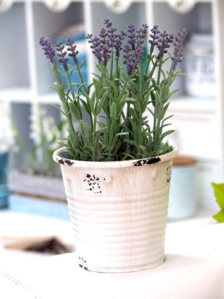 deko lavendel mit bertopf wohnzimmer dekofigur kunstblume. Black Bedroom Furniture Sets. Home Design Ideas