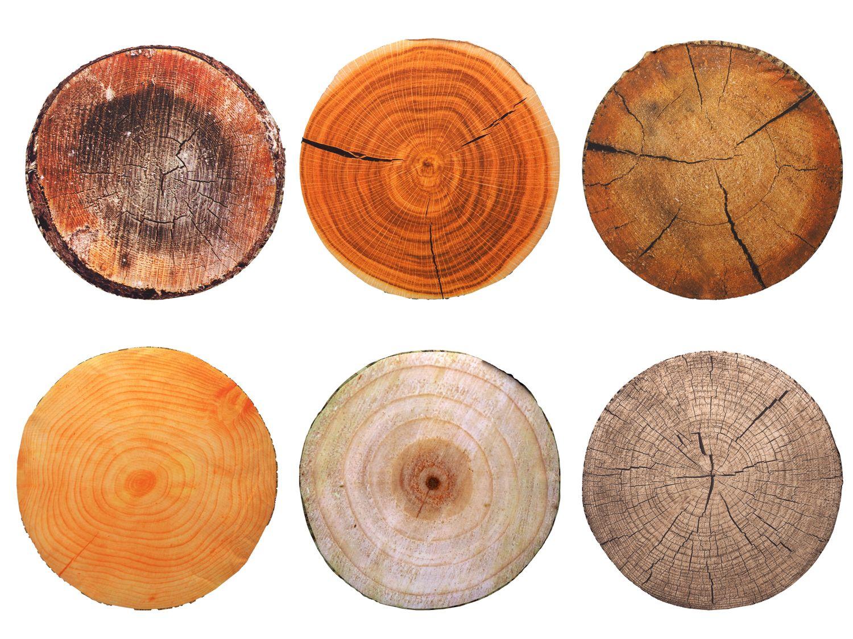 Stuhlkissen Sitzkissen Holz