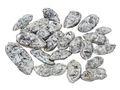 500g Bohnen Schoten Mint Silber Natur Deko Tischdeko Weihnachten Streudeko Basteln 1
