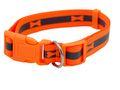 Hundehalsband Halsband Hund Orange Gelb Hunde Geschirr Neon 2