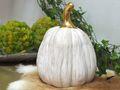 Dekofigur Kürbis Weiß Gold Herbst Garten Deko Winter Weihnachten 7