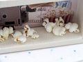 Geldgeschenk Verpackung Geldverpackung Kino Popcorn Kinogutschein Cinema Film Geschenk 4