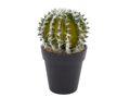Deko Kaktus Künstlich Rund mit Topf Schwarz 001