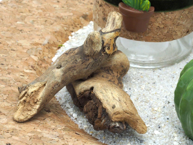 Tablett Deko Kaktus Kork Grün Natur Tischdeko Sommer Garten