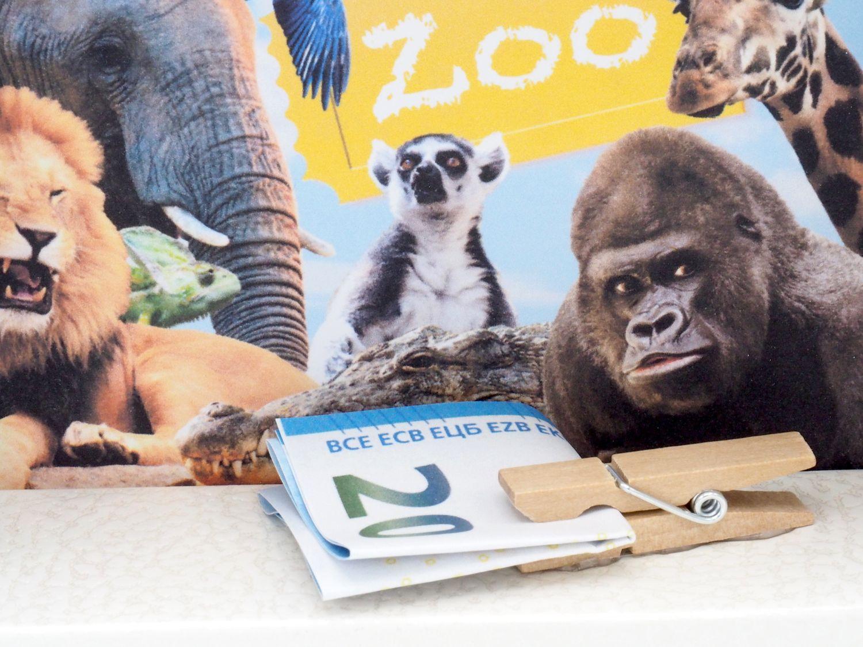 Geldgeschenk Verpackung Zoo Geldverpackung Geschenk Kindergeburtstag Tierpark