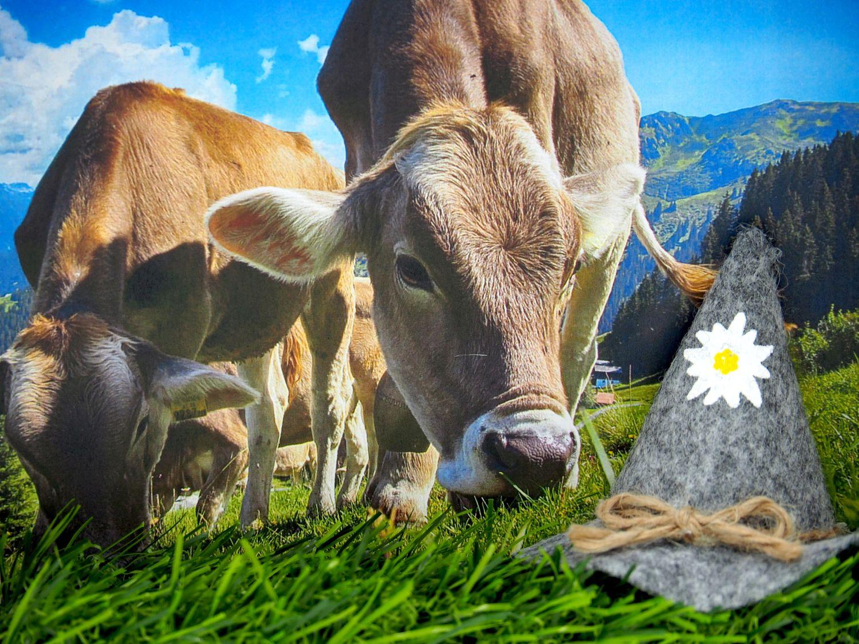 Geldgeschenk Verpackung Alpen Alm Urlaub Reise Gutschein Berge Almhütte Wandern