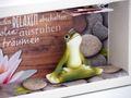 Geldgeschenk Verpackung Yoga Frosch Gutschein Wellness Massage Energiefrosch Relax Geschenk 4