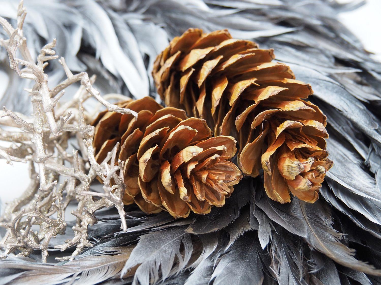 5x Zapfen Tannenzapfen Strobus Braun Deko Natur Tischdeko Weihnachten Advent Basteln Herbst