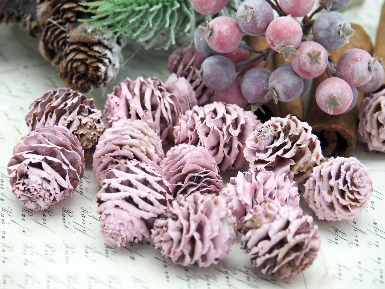 16 Zapfen Strictum Naturzapfen Rosa Beere Deko Weihnachten Adventskranz Basteln Streudeko Tischdeko Grabgestecke