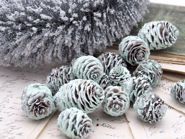 16 Zapfen Strictum Naturzapfen Mint Grün Deko Weihnachten Adventskranz Basteln Streudeko Tischdeko