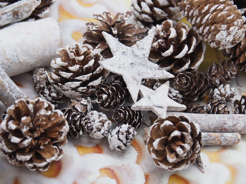 Zapfen Natur Sterne Weihnachten Deko Weiß Braun Holz Winter Tischdeko Basteln