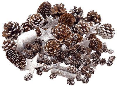 Zapfen Natur Sterne Weihnachtsdeko Deko Weiß Braun Holz Winter Weihnachten