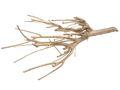 Zweig Ast Holz Gold Natur Deko Weihnachten Tischdeko 1