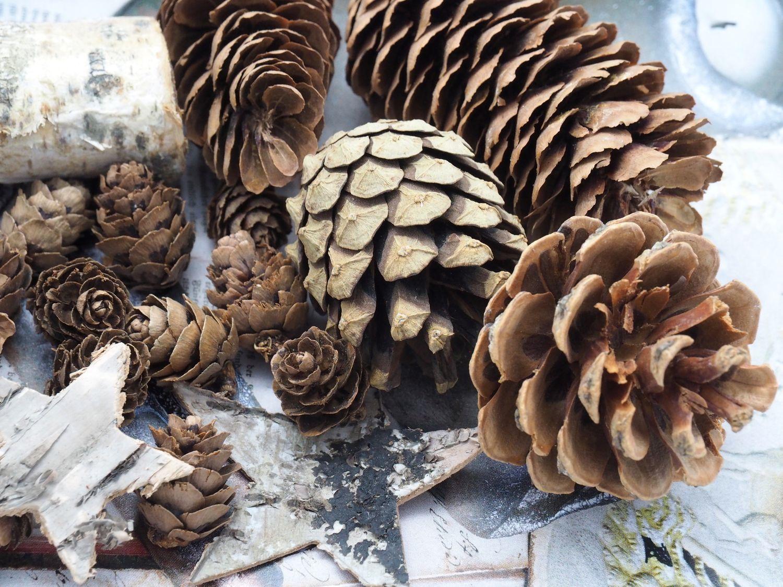 Zapfen Natur Sterne Weihnachten Deko Braun Holz Winter Tischdeko Basteln
