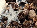 Zapfen Natur Sterne Weihnachten Deko Braun Holz Winter Tischdeko Basteln 2