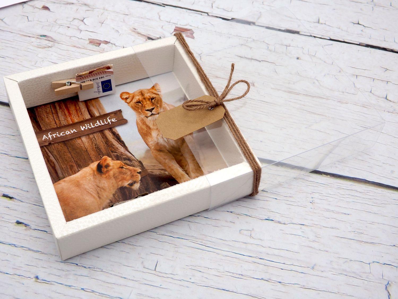 Geldgeschenk Verpackung Afrika Safari Urlaub Reise Fernreise Geldverpackung Wildlife