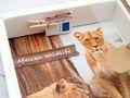 Geldgeschenk Verpackung Afrika Safari Urlaub Reise Fernreise Geldverpackung Wildlife 6