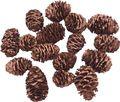 16 Zapfen Strictum Naturzapfen Kupfer Deko Weihnachten Adventskranz Basteln Streudeko Tischdeko  1