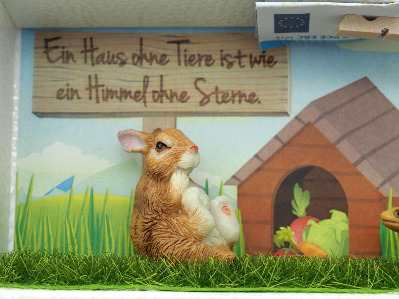 Geldgeschenk Verpackung Haustier Hase Kleintier Gutschein Tierbedarf Geburtstag Kindergeburtstag