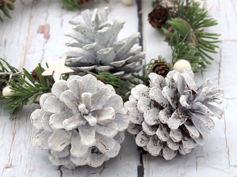 Zapfen Kiefer Tannenzapfen Weiß Kiefernzapfen Basteln Advent Weihnachten Tischdeko Adventskranz