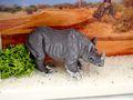 Geldgeschenk Verpackung Afrika Safari Giraffe Nashorn Urlaub Reise Gutschein Geschenk Abenteuerurlaub 9