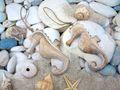 Seepferdchen Holz Anhänger Deko Maritim Figur Hängedeko Maritime Deko 4