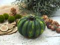 Kerze Kürbis Grün Herbstdeko Deko Herbst Tischdeko Halloween Thanksgiving  2