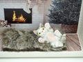 Geldgeschenk Verpackung Katze Weihnachten XMAS Gutschein Kamin Geburtstag Geschenk  4