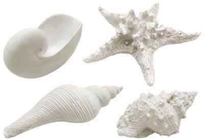 Muschel Schnecke Seestern Weiß Streudeko Muschelmix Maritim Deko Polyresin Groß 4 Stück