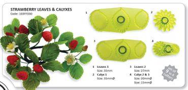 JEM Strawberry Leaves and Calyxes - Erdbeer Blätter und Blütenkelch Ausstecher – 4 teilig