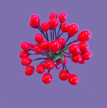Blütenpollen / Beeren rot groß