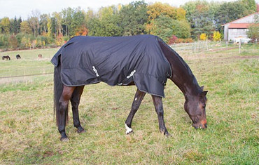 RugBe IceProtect 200 Horse Blanket – Bild 2