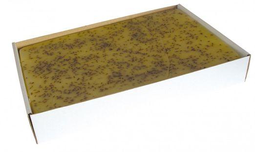 Fan-Agri Geschmorene Käse Halbfett mit Kümmel 500g