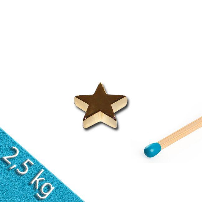 Neodym Magnet in Sternform vergoldet GOLD