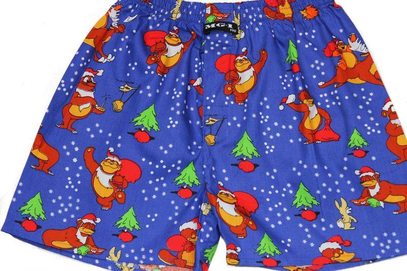 MG-1 Webboxer Jungen Weihnachten Bären Motiv Boxershorts  Geschenk