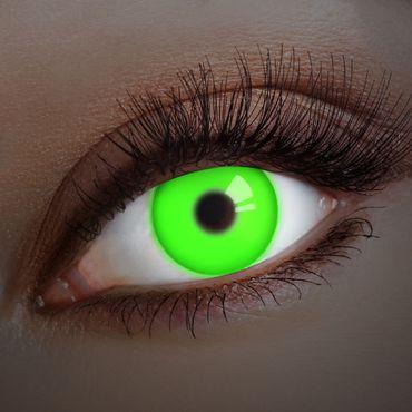Kontaktlinse UV Grashopper – Bild 1