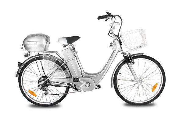 Elektrofahrrad E-Bike 250 Watt 26 Zoll inkl. Korb + Topcase – Bild 3