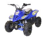 Bigfoot Nitro Quad 125 ccm 6 Zoll Automatik