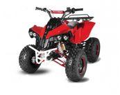 125cc Warrior 3G8 Kinderquad 8 Zoll Automatik + Rückwärtsgang