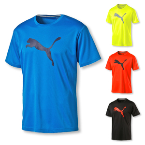 PUMA T-Shirt Training Essential Shirt LSF 30+ - Farbwahl