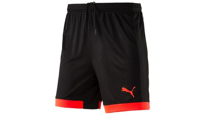 Puma Herren Trainingsshorts IT evoTRG