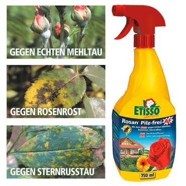 Rosan® Pilz-frei, 750 ml – Bild 1
