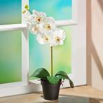 Orchidee im Topf, 35 cm, weiß 001