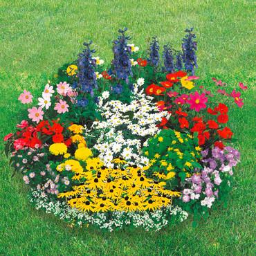 Blumen-Teppich – Bild 2